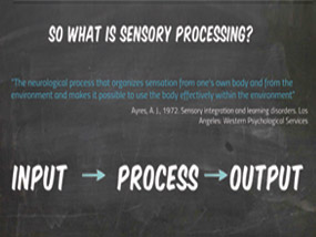 Sensory Procssing Important for Effective Learning
